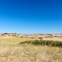National Seashore Dunes