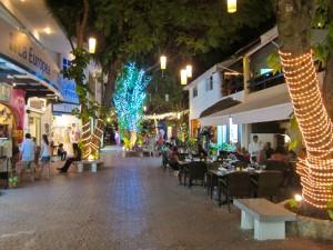playa-tree-lights